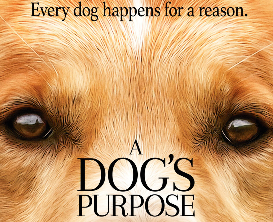 New Movie 'A Dog's Purpose' Could be the Stuff of Nightmares