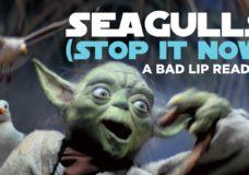 Yoda SINGS in Bad Lip Reading's 'SEAGULLS! (Stop it Now)'