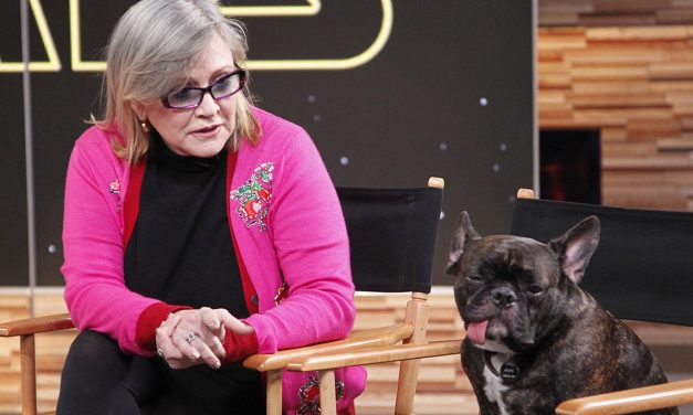 STAR WARS: THE LAST JEDI Has a Alien Version of Carrie Fisher's Dog