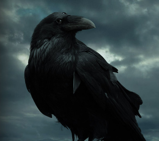 Become a Three-Eyed Raven and 'Game of Thrones' Season 5 Teaser Could be Yours!!