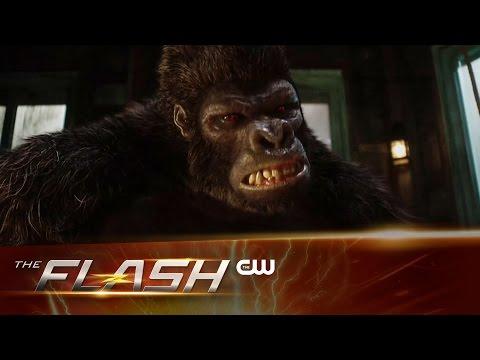 "Sneak Peek at Next Week's Episode of The Flash ""Gorilla Warfare"" Sees Grodd Return!"
