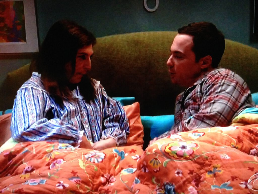 The Big Bang Theory Recap: (S10E04) The Cohabitation Experimentation