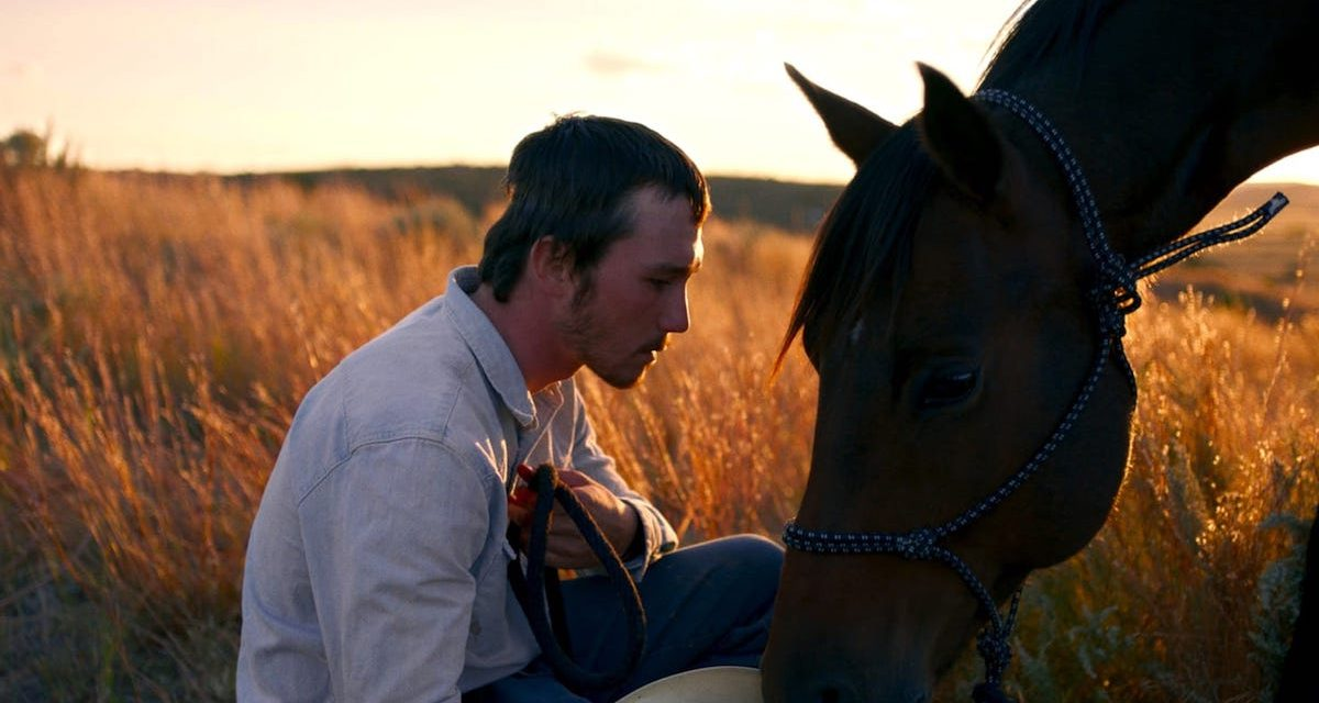 Movie Review: THE RIDER