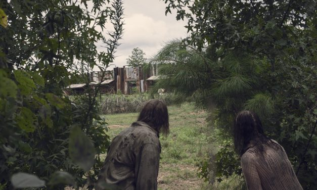THE WALKING DEAD Recap (S09E10) Omega