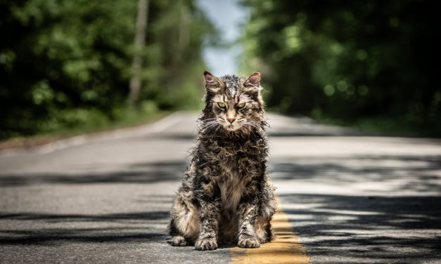 PET SEMATARY Spoiler Review