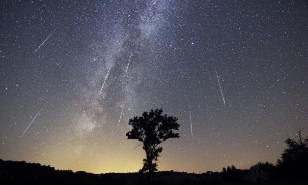 Watch Monday's Perseid Meteor Shower at Home or Online