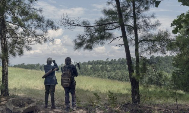 THE WALKING DEAD Recap: (S10E06) Bonds