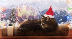 yule log with cat