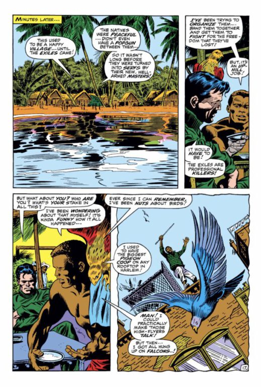comic panel - Sam Wilson talking about his love of birds