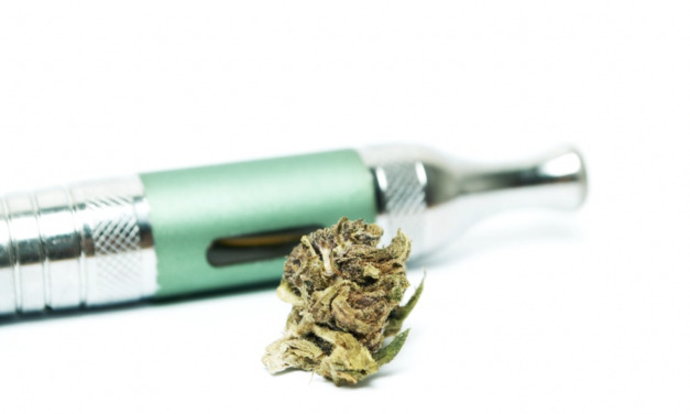 Steps to Clean Your Dry Herb Vaporizer