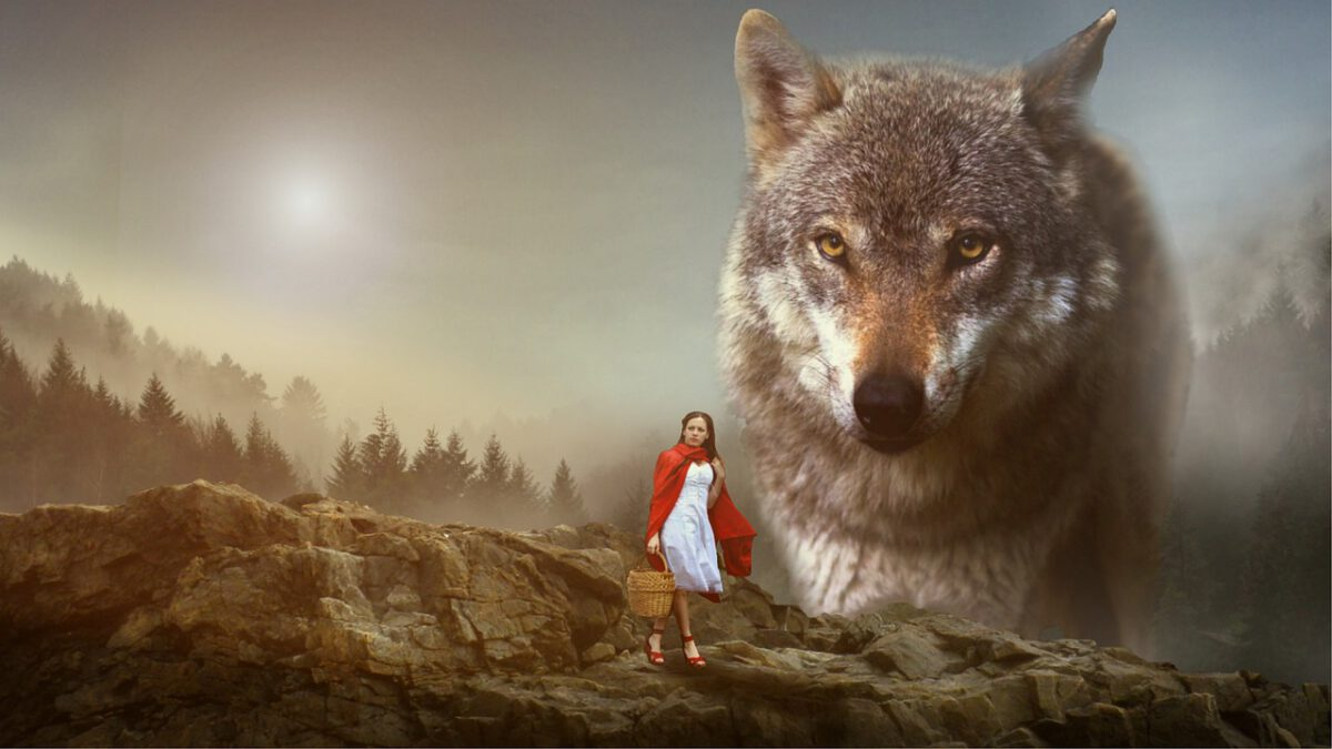 girl in red cloak with large wolf horror love story