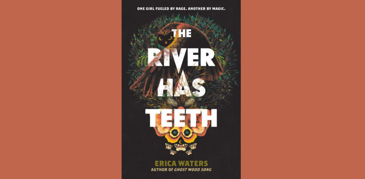 Cover for The River Has Teeth by Erica Waters.