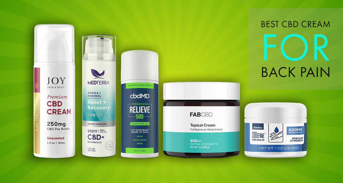 Best CBD Cream for Back Pain: Review & Top Brands