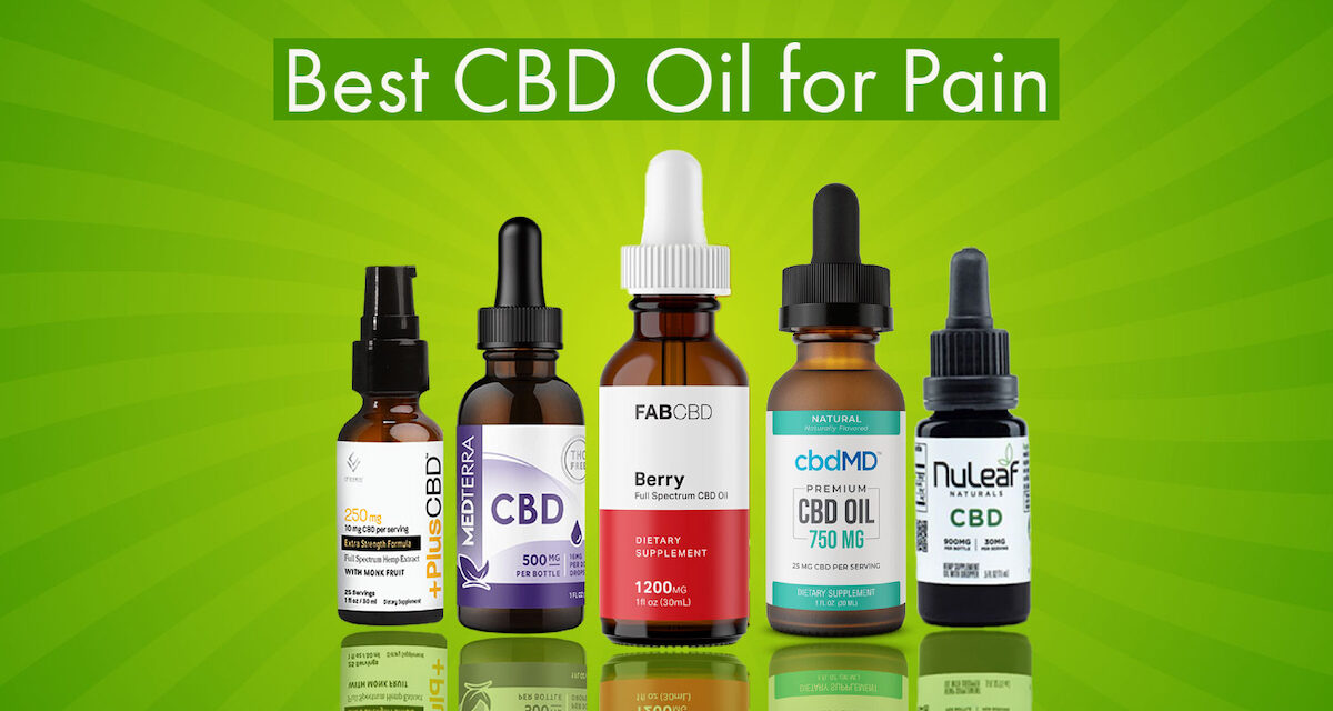 Best CBD Oil for Pain: Review & Top Brands