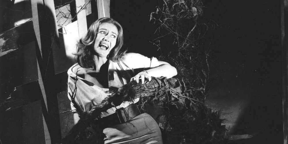 Still from horror classic Day of the Triffids.