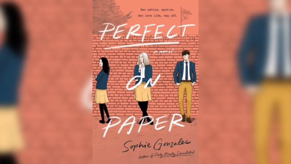 disaster bisexual: perfect on paper cover